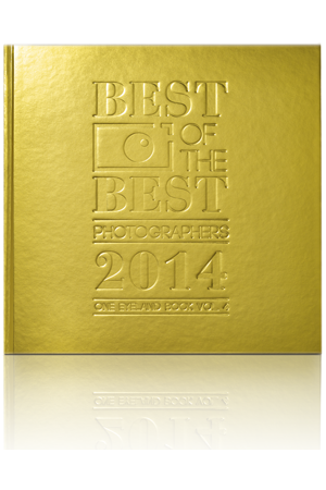 BEST OF THE BEST PHOTOGRAPHERS 2014
